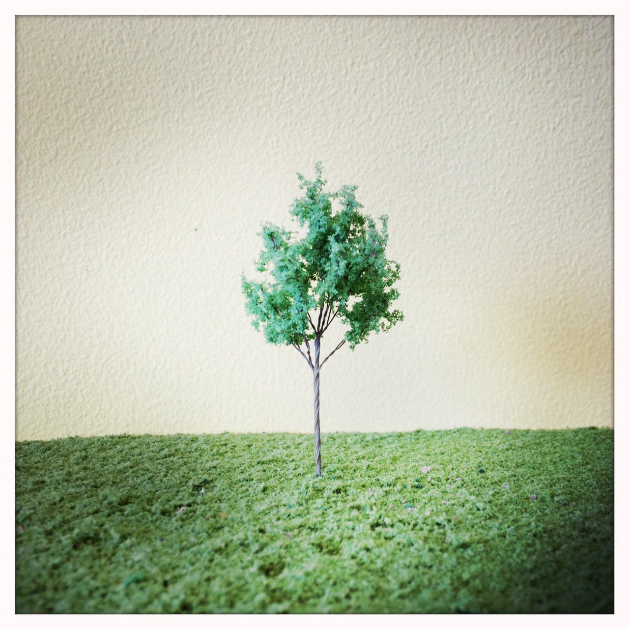 Tree Samples | Custom Tree BuildersCustom Tree Builders